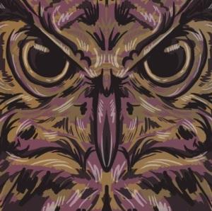 RUDE OWL