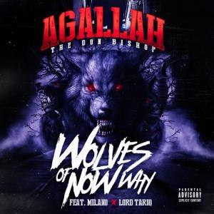 AGALLAH WOLVES